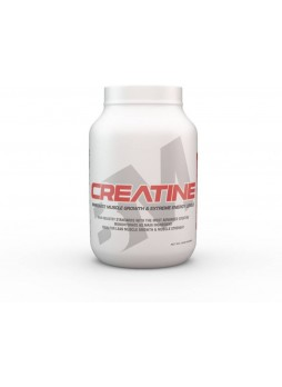 Big Muscle Creatine 300 gm