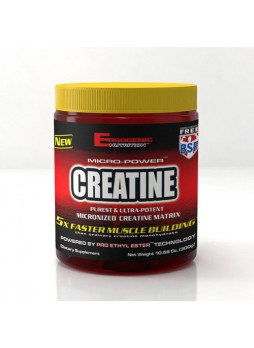 ERGOGENIC CREATINE 300 gm