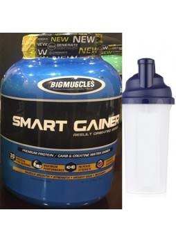 Big Muscle Smart Gainer Chocolate 6 lbs